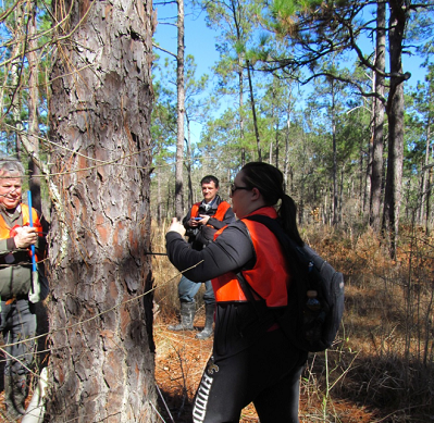 Students and faculty in the field collecting a tree core sample